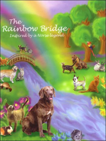 rainbowbridge_smnorse