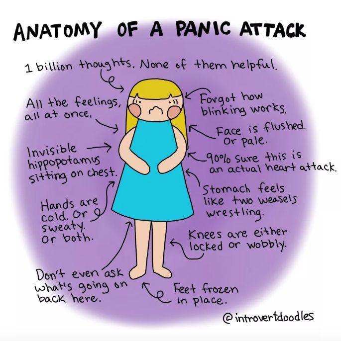 anatomy of panic