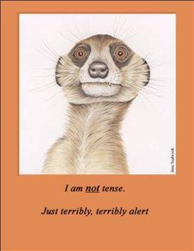 I am not tense