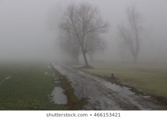 dreary-rural-road-landscape-on-260nw-466153421