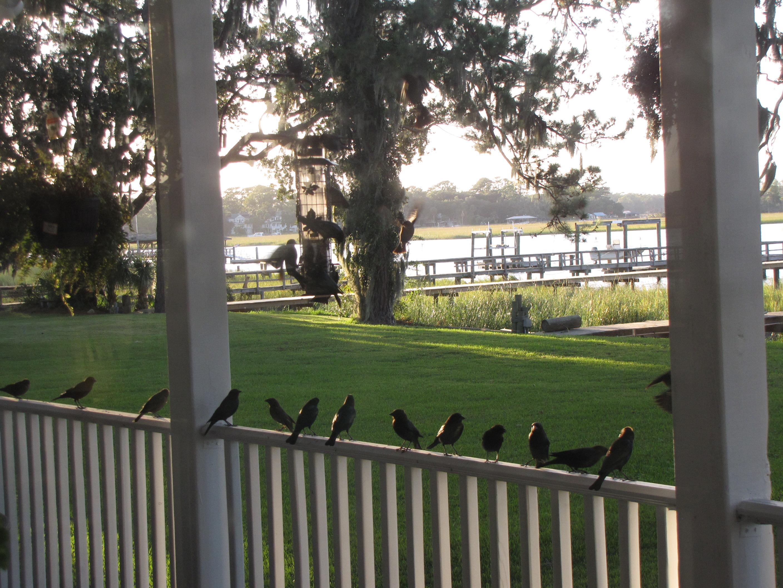 porch photo birds