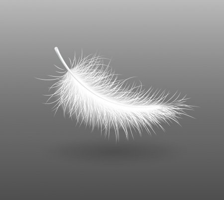 feather-falling-light-small-white